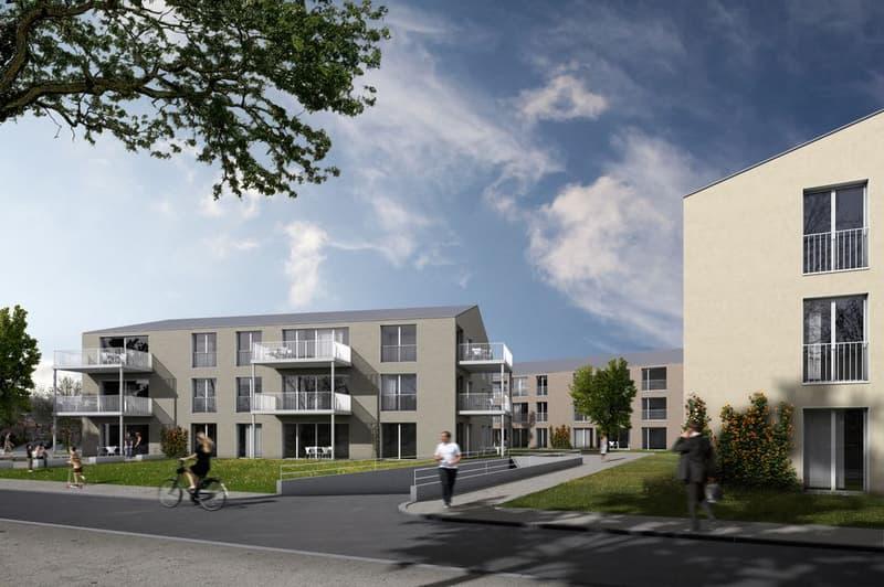 2 Mehrfamilienhäuser - Neubau