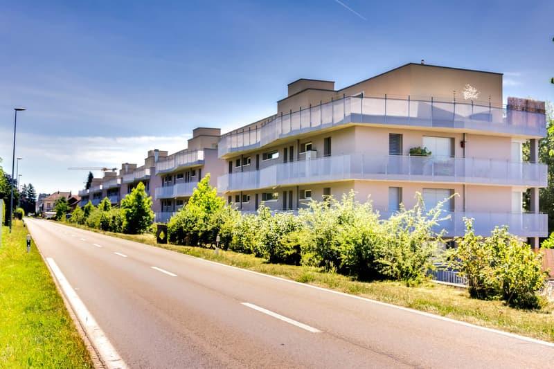 Attraktives Wohnen im Grünen in Anglikon (1)