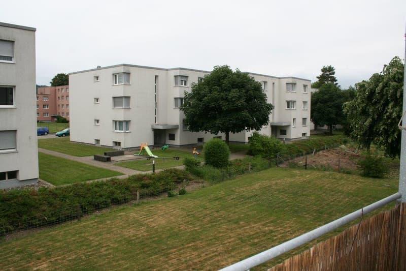 Charmante Wohnung mit grossem Balkon (3)