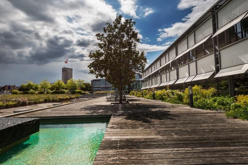 «Campus emblématique à louer / Rive Gauche, Collonge-Bellerive» (1)