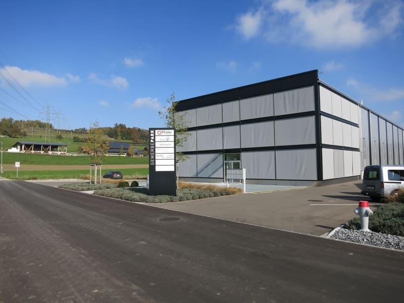 Moderne Gewerbehalle zu vermieten