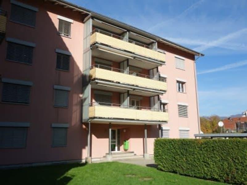 Neu Renovierte 3 Zimmerwohnung in Aarburg!