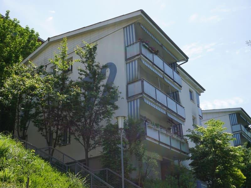 3 1/2-Zimmerwohnung, 1. Stock links