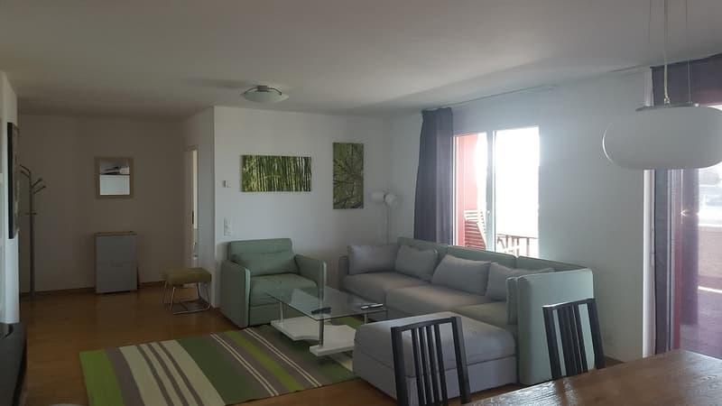 Lausanne centre et lac. 3-4-5-6 pces modernes, sobres ou luxueux à choix.