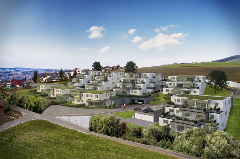 5 1/2 Zimmer-Terrassenwohnungen, Kaisten (2)