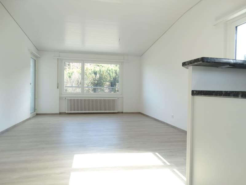 Komplett renovierte 5.5-Zimmerwohnung
