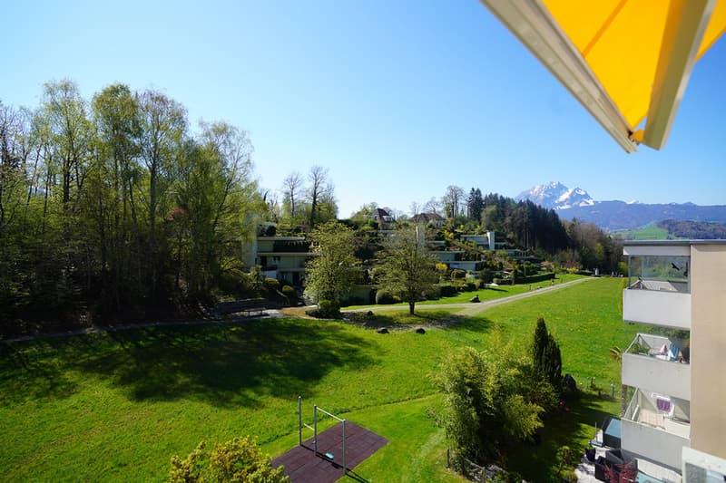 Zuoberst Wohnen in der Nachbarschaft zu Schloss Meggenhorn