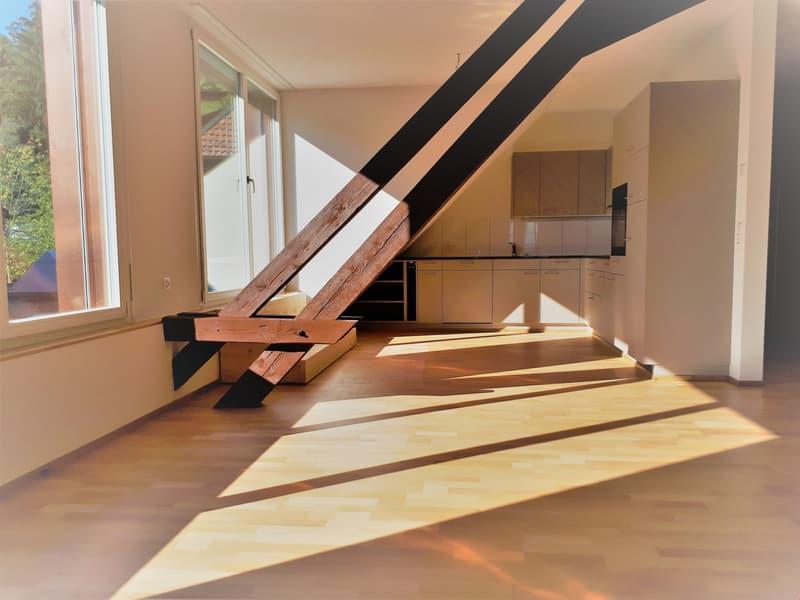 Erstvermietung 4.5-Zimmer-Dachwohnung mit Terrasse