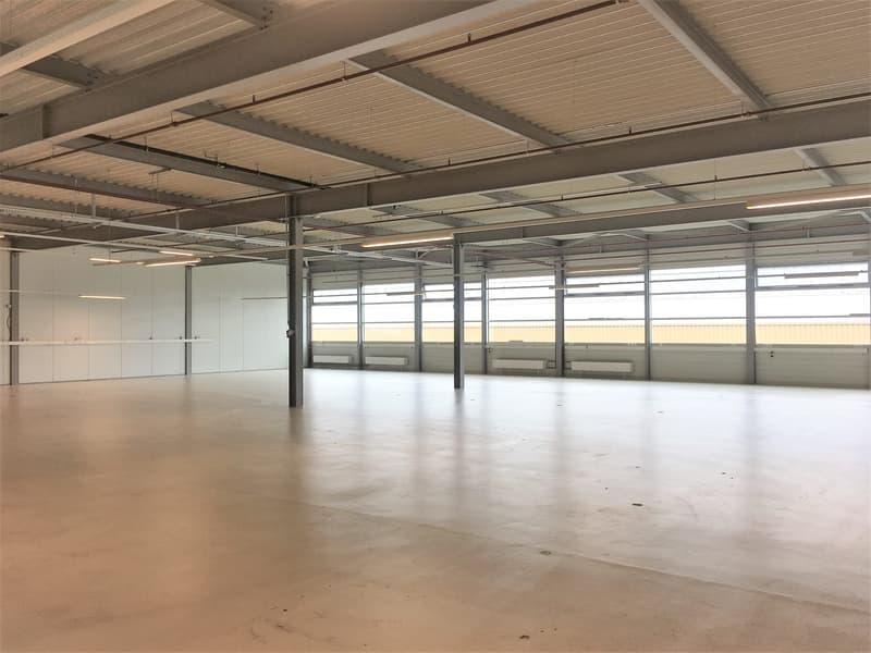 Halle industrielle de 700 m2 à louer à Nyon