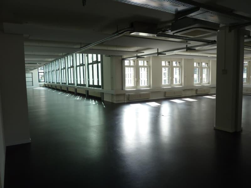 Sehr grosszügige Büroräume mit Terrasse