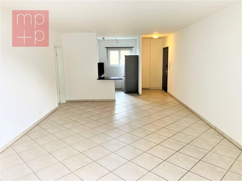 Appartamento - Melide