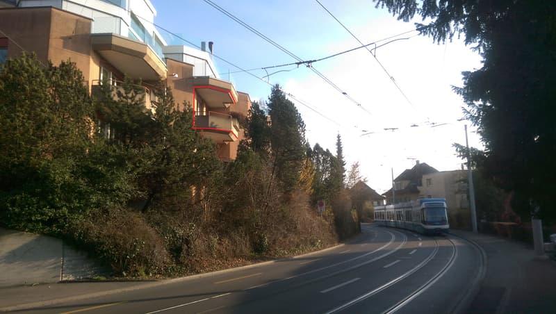 Elegant short stay Apartment / Upscale Neighborhood / Parking / Business friendly / 100Mbs Internet