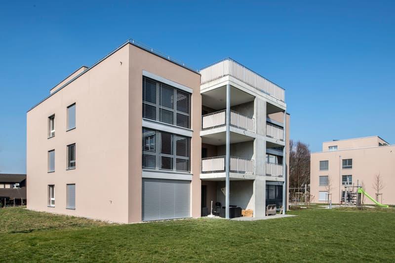 Moderne Wohnung sucht neuen Mieter! (1)