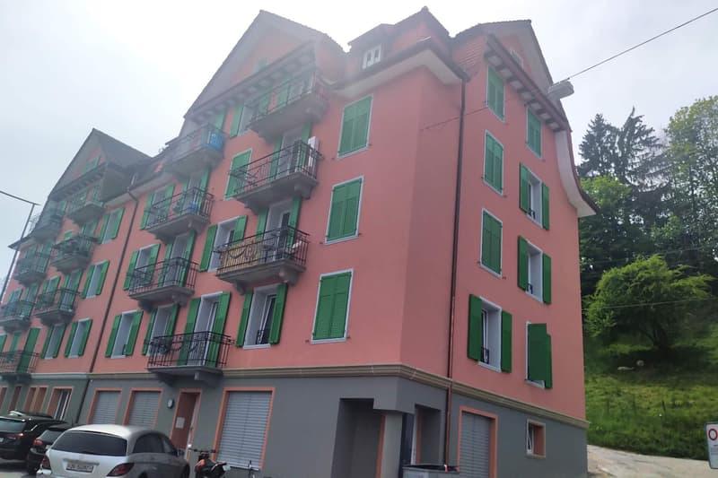 Neu renovierte 3.5 Zimmer Wohnung an zentraler Lage in Luzern!