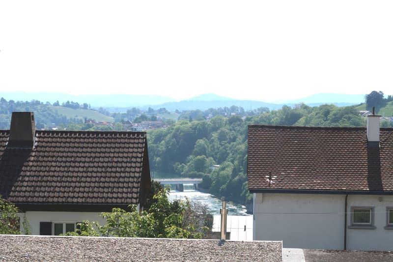 Herzige 2-Zimmer-Wohnung mit Blick auf den Rheinfall!