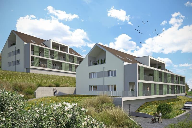 PUNCTO VISTA - 23 Neubauwohnungen in Hallwil