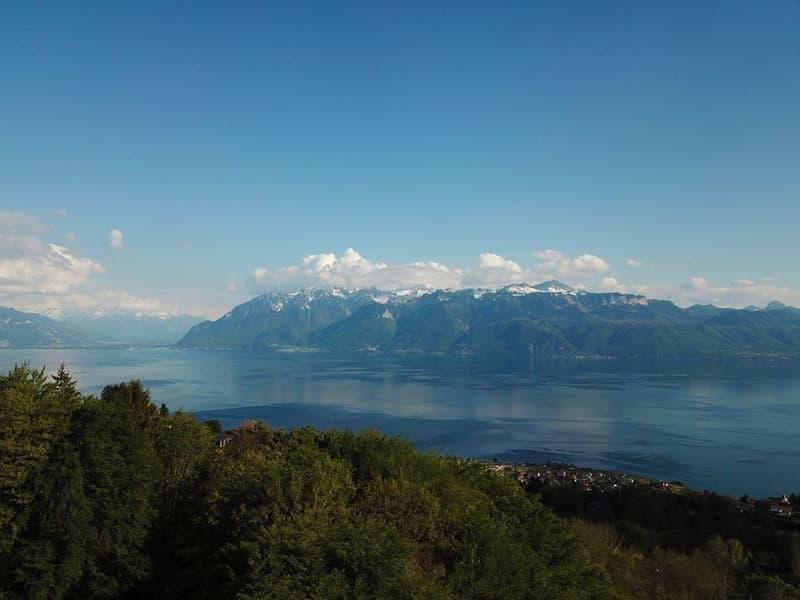 Le luxe... c'est l'espace, la vue, le calme..  à 10 min. de Lausanne (3)