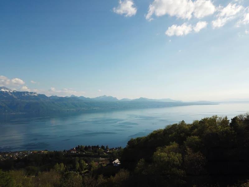 Le luxe... c'est l'espace, la vue, le calme..  à 10 min. de Lausanne (4)