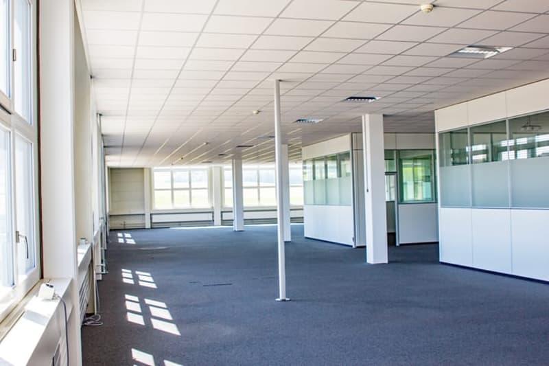 Gewerbefläche mit ca. 4 m Deckenhöhe - Büro wird zurück gebaut (2)