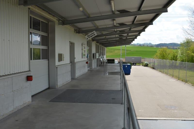 Gewerbefläche mit ca. 4 m Deckenhöhe - Büro wird zurück gebaut (4)