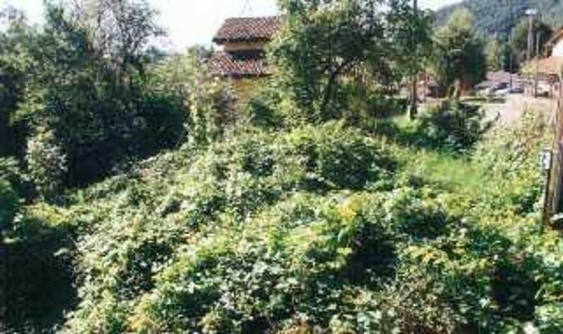 Garten / Giardino