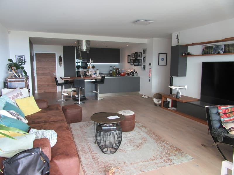 Magnifique appartement-terrasse de haut standing (4)