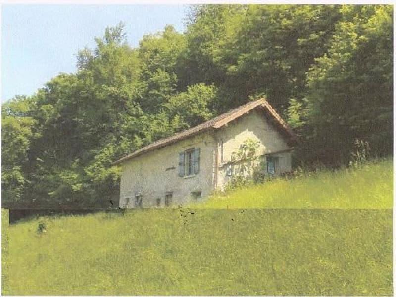 Casa da riattare / Haus zum Ausbauen mit Wiese