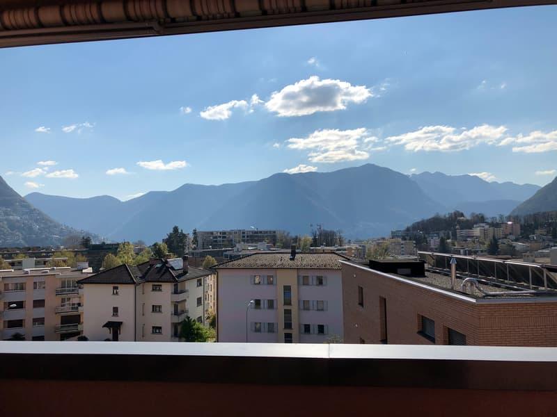 Affittasi ampio bilocale a Breganzona (4)