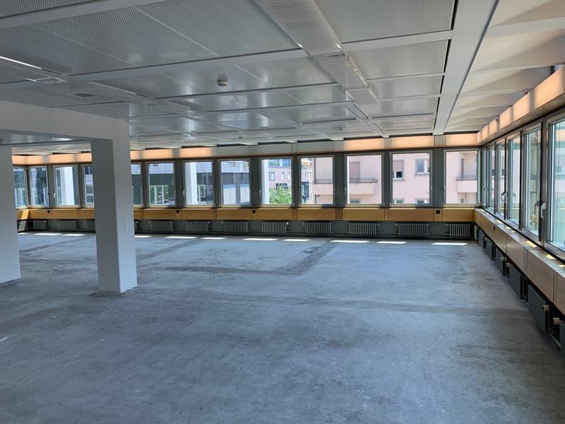 Hochhaus zur Palme: revitalisierte Büros im CBD (2)