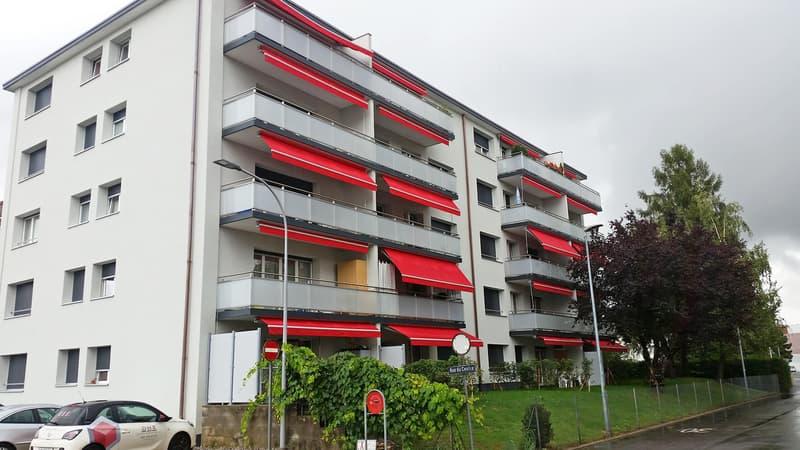 Bel appartement de 2 pièces au rez-de-chaussée entièrement rénové. (appartement n°4)