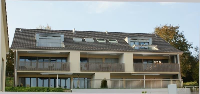 Moderne 3.5-Zimmer-Wohnung in der Nähe von Brugg zu vermieten