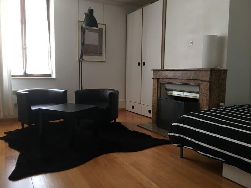 Charmant appartement meublé sis au coeur du vieux Carouge