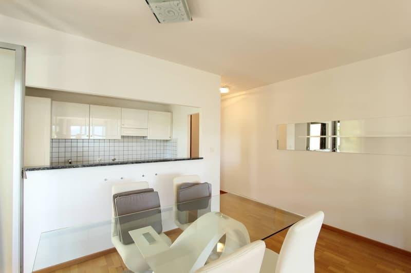 Appartamento - Castagnola