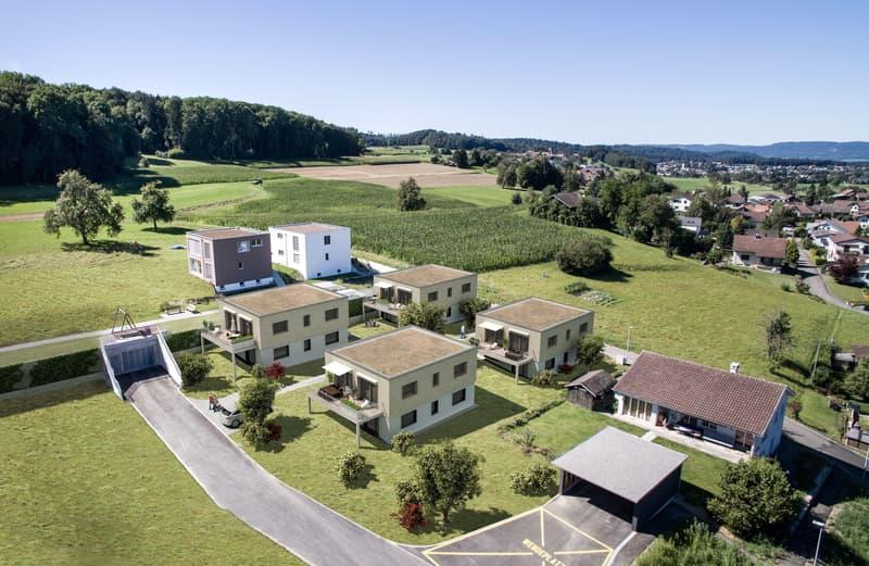 5 1/2 Zimmer-Einfamilienhäuser in 5705 Hallwil