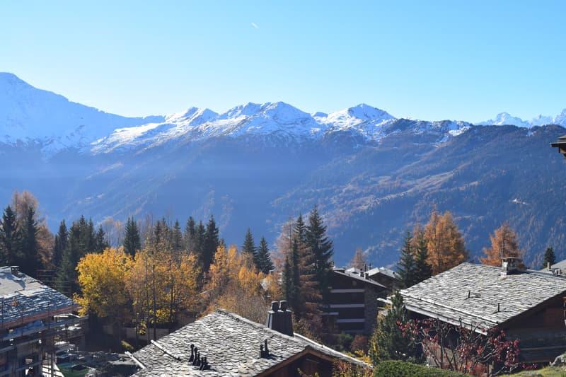 4 bedroom apartment next to Les Esserts ski piste