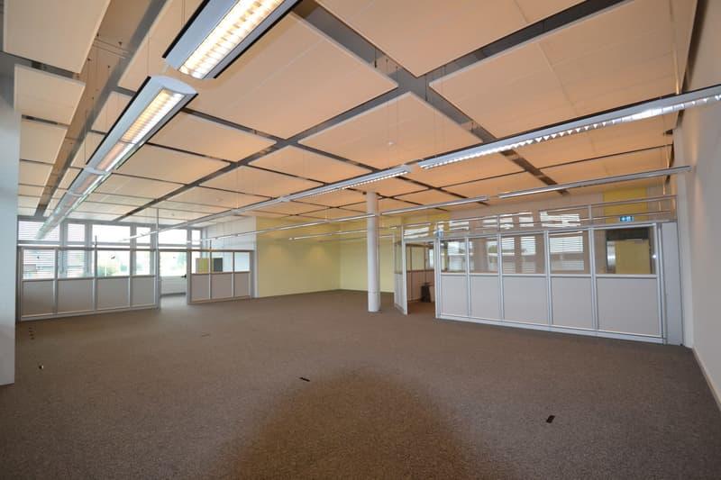 Bürofläche von 240m2