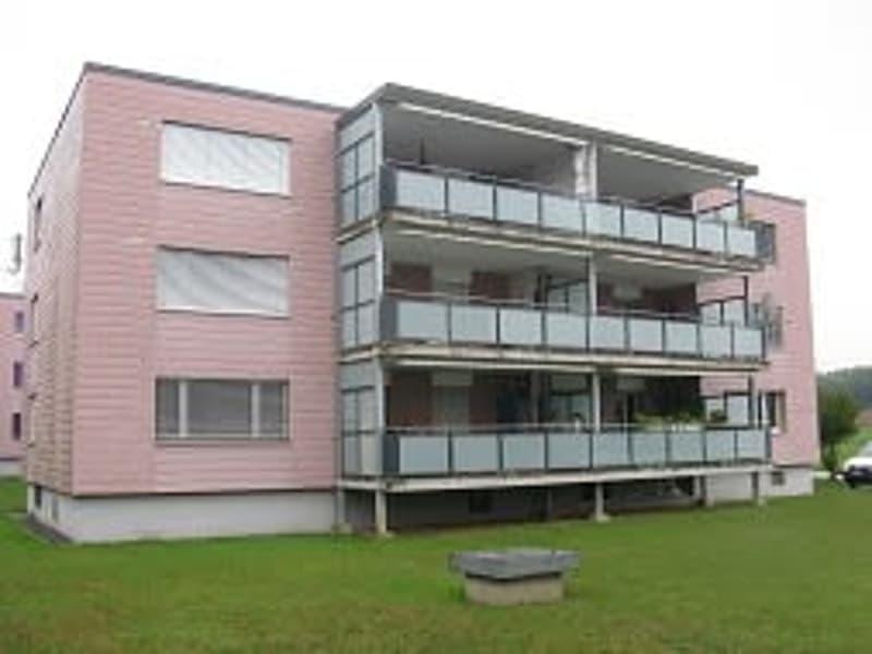 Renovierte Wohnung mit grossem Balkon