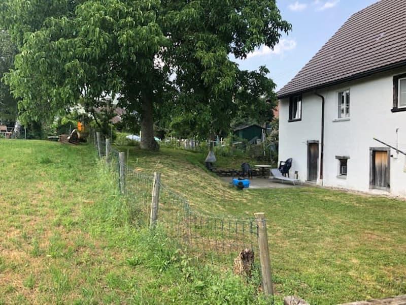 3 Zimmer-Wohnung in Altbau (alte Mühle)