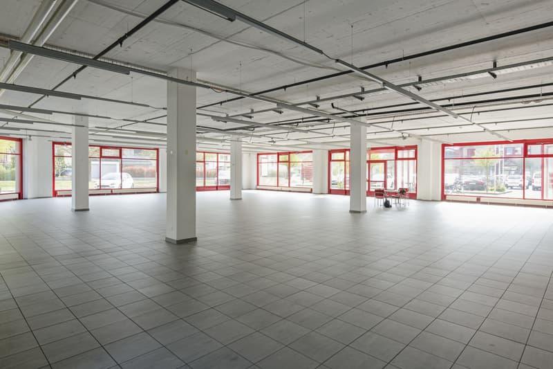 Repräsentative, attraktive und helle Praxis-/Verkaufs-/Büroräume (4)
