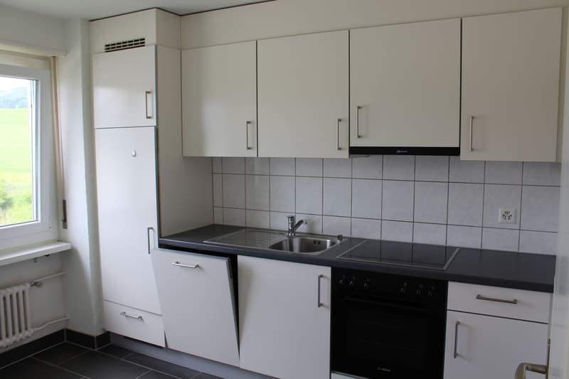 1.5 mois de loyer OFFERT ; Appartement à 2.5 pièces entouré de vert