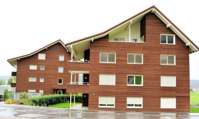 Neue moderne Wohnung zu vermieten