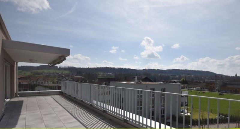 3 1/2 Zimmer Attikawohnung mit 50m2 Terrasse (4)