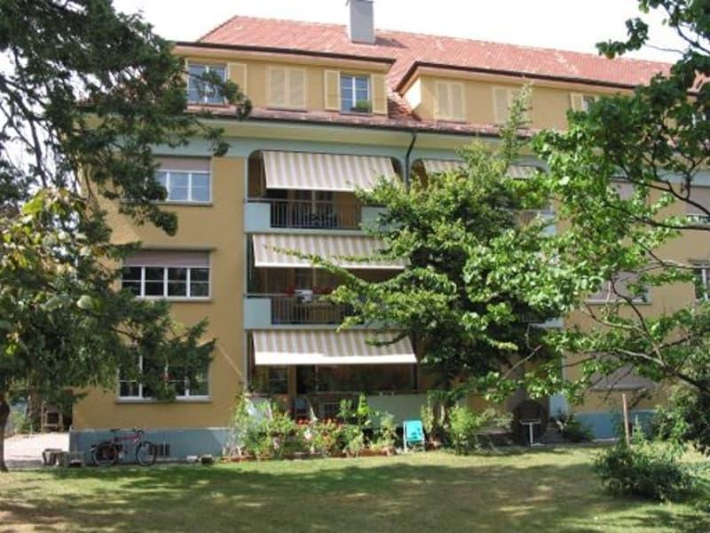 3-Zimmerwohnung, 2. Stock
