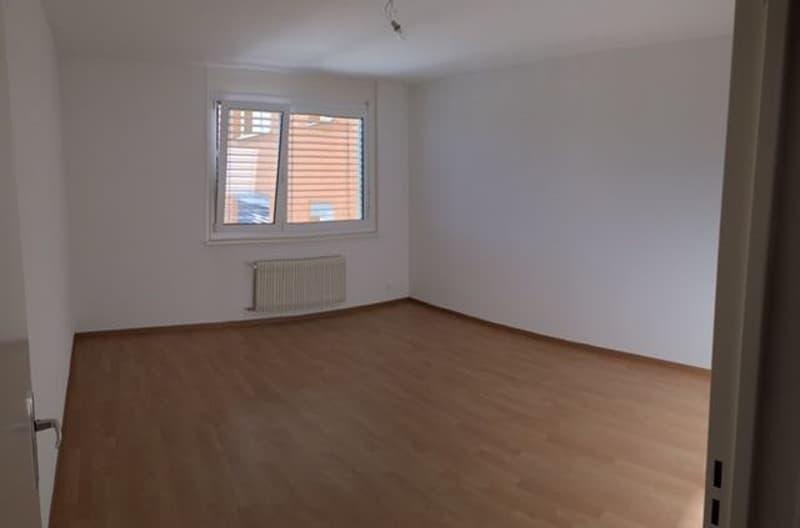 À Louer, Appartement, 1607 Palézieux, Réf 50091.004.020
