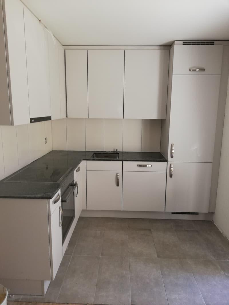 neu renovierte zentral gelegene 3 Zimmer Wohnung! (1)