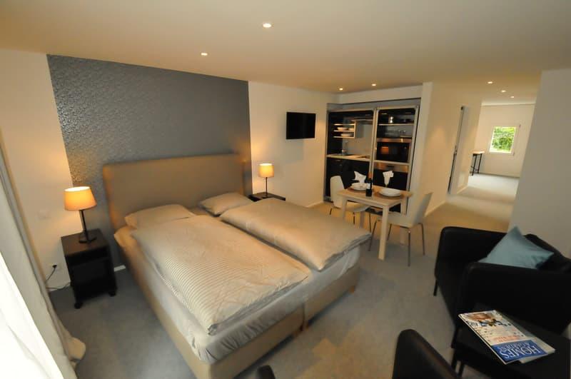Wunderschönes, möbliertes Apartment mitten in Zürich