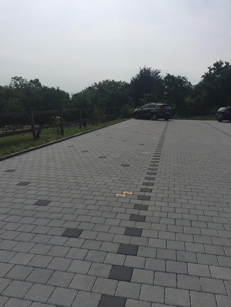 Parkplätze Zielweg 80, 8055 Zürich (Friesenberg)