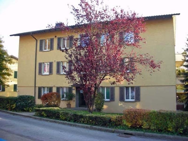 Gemütliche Wohnung im Grünen sucht Sie! (3)