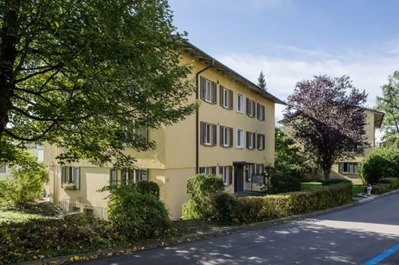 Gemütliche Wohnung im Grünen sucht Sie! (4)