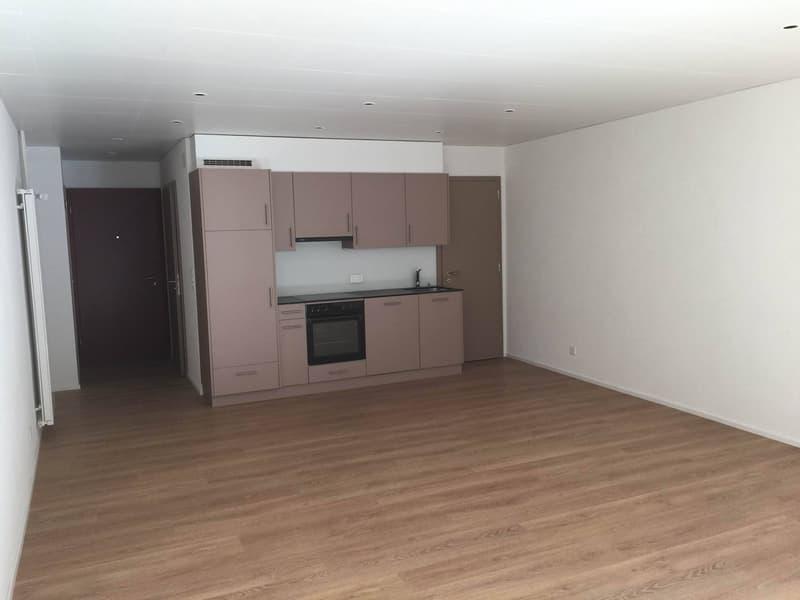 Studio Loft 50 m2 - neuf